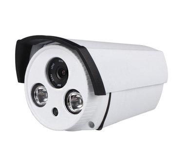 Beveiligingscamera met twee grote Infrarood Lampen (1.3MP)